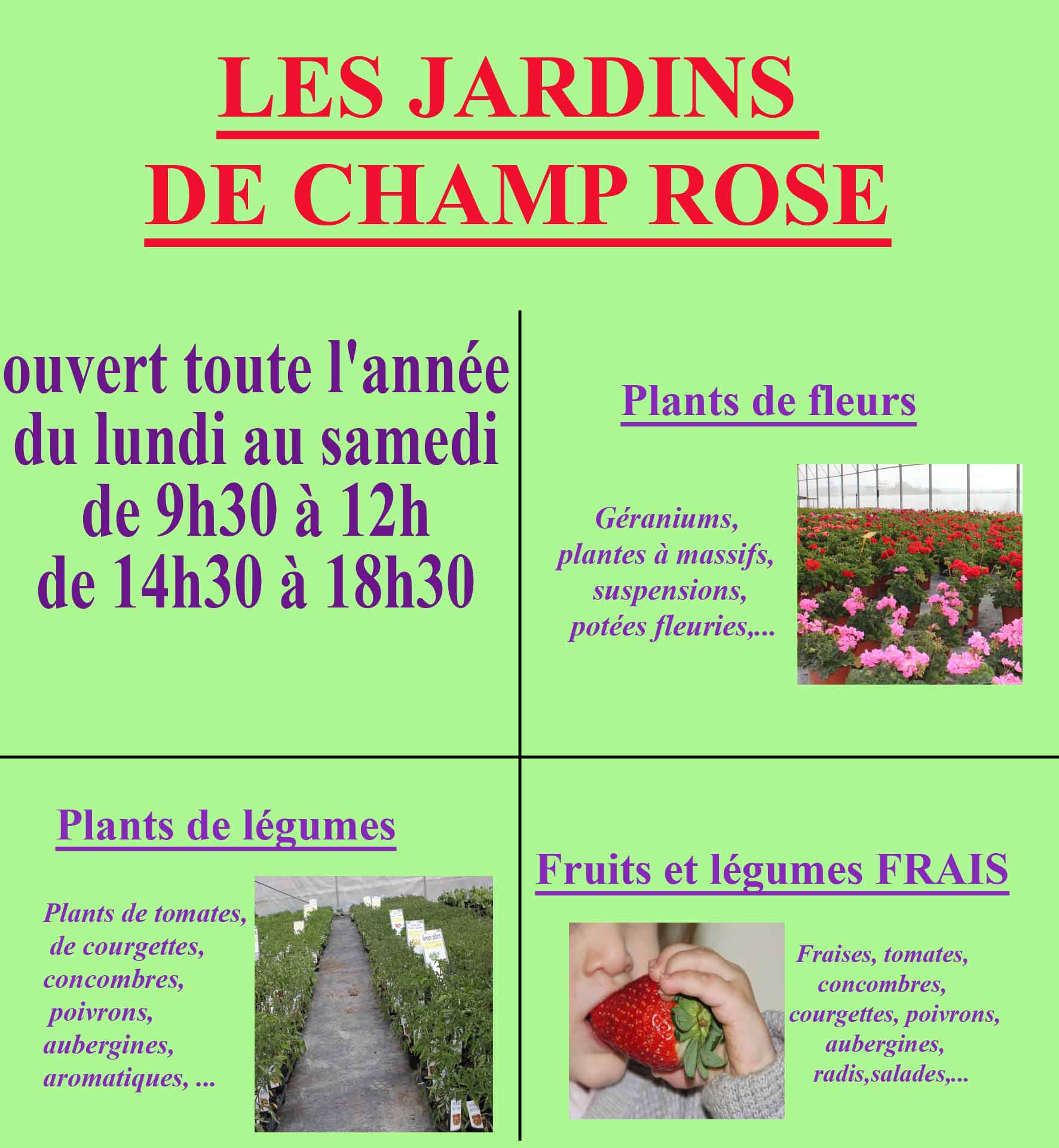 les jardins de champ rose plantes en sud charente. Black Bedroom Furniture Sets. Home Design Ideas